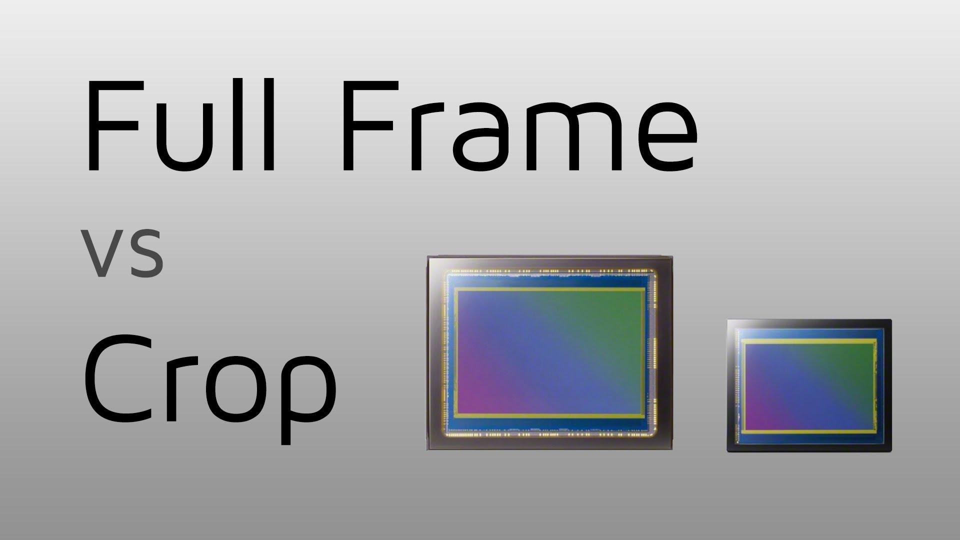 Full-frame of Crop sensor camera? - Peter Verduin photography